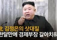 '김정은식 충격요법' 30일 만에 당 경제부장 갈아치웠다