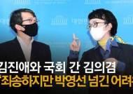 """나경원 """"김의겸에 의원양보 압박 의혹""""…김진애 """"낭설, 사퇴는 내 결정"""""""