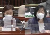 """838억 서울·부산시장 선거가 """"성인지 학습기회""""라는 여가부장관"""