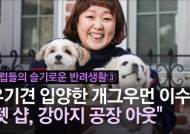 [그 셀럽의 반려생활③] 공중화장실 '설기'가 찾아왔다…개그우먼 이수지의 9년 인연