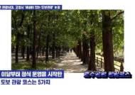 4명 이하 '해설 있는 고양시 도보관광'…'코로나 힐링' 제격