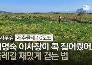 [영상]서명숙 이사장이 콕 집은 '올레길 더 재밌게 걷는 법'