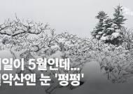 4월 마지막날 웬 겨울왕국…설악산에 눈 펑펑, 15㎝ 쌓였다