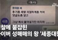 """""""후기 리얼하게""""…텔레그램 '세종대왕'은 사이버 성매매 보스"""