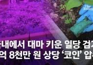 '약쟁이'들은 암호화폐 쓴다…대마 일당 잡으니 5억원 '코인'