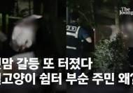 길고양이 쉼터 내던지고 봉사자 폭행한 남성 입건[영상]