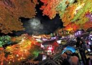 한영애·정수라·마야 … 청량사의 밤 달군 음악회