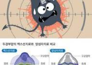 암세포 '원샷 원킬' 양성자 치료, 다른 장기 손상 최소화