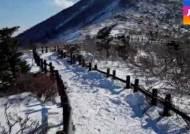 갑작스런 한파…겨울철 안전한 운동·건강 관리법은?