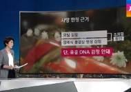 """검찰 """"조희팔 사망"""" 결론 냈지만…풀리지 않은 의혹"""