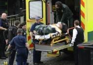 영국 의사당 테러범 검거…'외로운 늑대형' 테러 양상