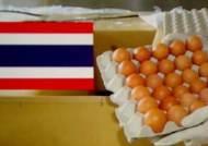 달걀값 낮추러 온다던 태국산 '연락 두절'…시장 혼선