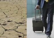 가뭄도 사드도 못 막은 '외유성 출장'…성과물은 전무
