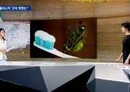 미세플라스틱 노출된 물벼룩 알 83% 사망…인체 영향은?