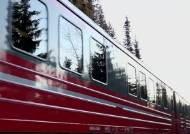 [해외 이모저모] 노르웨이 순록 106마리, 기차에 치여 떼죽음