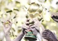 이젠 카타르…한국 우승 배당률 2500분의 1 '공동 44위'