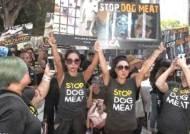LA 총영사관 앞 '개고기 식용 반대' 시위…산낙지도 불똥