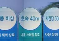 [오늘의 날씨 키워드] 태풍 비상·초속 40m·시간당 50mm