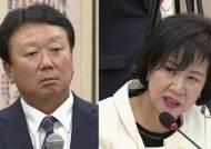 [국회] '호통' 손혜원, '벵갈고양이' 김진태…국감 비난 봇물