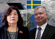 북·미 이틀째 스웨덴 '합숙 담판'…비핵화·상응조치 조율