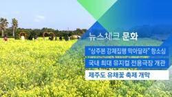 [뉴스체크|문화] 제주도 유채꽃 축제 개막