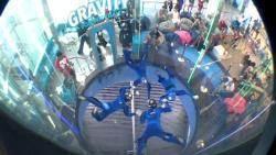 '낙하산 없이 날 수 있을까?'…실내 스카이다이빙의 세계