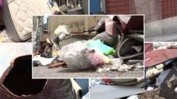 '쓰레기장' 된 재개발지구…타 지역 주민들도 몰려와 '슬쩍'