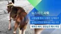 [뉴스체크|사회] 복제견 메이, 영양실조 폐사 추정