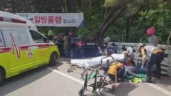 통도사 고령운전자 돌진 사고…'면허반납 논의' 재점화