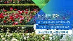 [뉴스체크 문화] 5km 장미꽃길, 서울장미축제