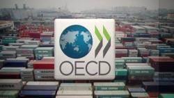 """[이 시각 뉴스룸] OECD """"한국 올 성장 2.4%""""…두달 새 0.2%p 하향"""