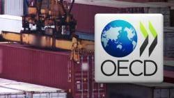 OECD, 올 한국 성장률 전망 2.4%로 낮춰…수출 부진 영향