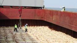 9월 전 바닷길로 쌀 30만톤?…정부, 대북 직접지원 검토