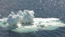 """""""2100년 해수면 최고 238㎝↑""""…더 빨리 녹는 남극"""