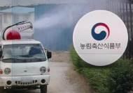 북한 '돼지열병' 공식 확인…접경지역 방역에 '초비상'