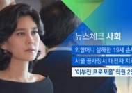 [뉴스체크|사회] '이부진 프로포폴' 의료진 2명 입건