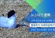 [뉴스체크|문화] 멸종위기 '쇠제비갈매기' 부화