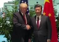 '러시아 방문' 시진핑, 푸틴과 화웨이 동맹?…배경은