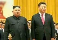 """미 """"우리의 목표는 북 FFVD 달성""""…시진핑 방북에 촉각"""
