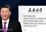 """시진핑, 북 매체에 기고문 """"한반도 문제 대화·협상 진전 기여"""""""