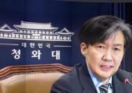 """조국, 법무부 장관 유력…""""청와대, 인사검증 작업 시작"""""""