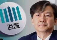 """'조국 법무 카드' 꺼낸 청와대…""""검찰 개혁 완수"""" 주문"""