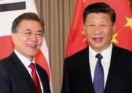 """한·중 정상회담…시진핑 """"김 위원장, 비핵화 의지 변함 없다"""""""
