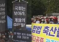 '개고기 반대' 킴 베이싱어 참석…10m 옆에선 '시식회' 맞불
