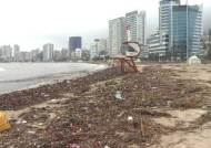 곳곳 물난리, 해수욕장은 '쓰레기 집하장'…다나스가 남긴 피해