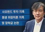'사모펀드-동생 위장이혼-딸 장학금'…조국 논란 쟁점들