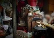 쓰레기더미 속 수십 년…할머니와 강아지 20마리 '구조'