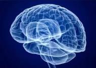 수술 없이 초음파만으로…'뇌질환 치료' 새로운 길 여나