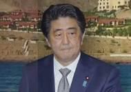 일본, '호르무즈 해협 자위대 파병' 가닥…한국도 가나