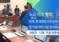 [뉴스체크|정치] 과방위, 12월 '구글 청문회' 추진